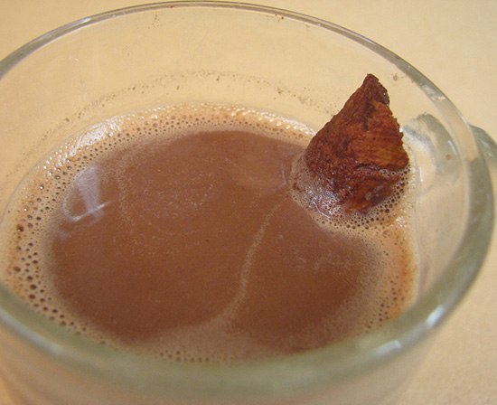 Mexican hot chocolate with Ceylon cinnamon